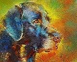 LKAZLL Kit de pintura por números para niños y adultos, pintura al óleo, pinturas acrílicas para el hogar Art Deco regalos de perro labrador negro 40,6 x 50,8 cm