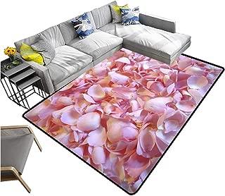 Best rose petal carpet Reviews