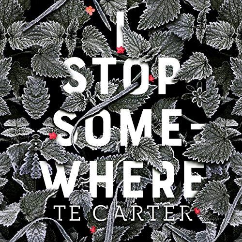 I Stop Somewhere audiobook cover art