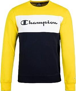 Champion Blocked Logo Sweater Sweatshirt