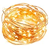 TaoTronics LED String Lights 33 ft with 100 LEDs, Waterproof Decorative Lights for Bedroom, Patio,...