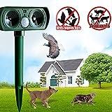 caidi de défense contre les animaux, solaire Chiens Anti-animaux Ultrason Répulsif contre pour chien, chat, souris, rats, oiseaux, cerfs, renards, lapin pour votre jardin et maison