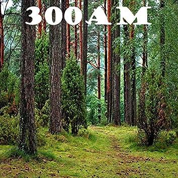 300am