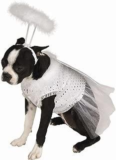dog costume singapore