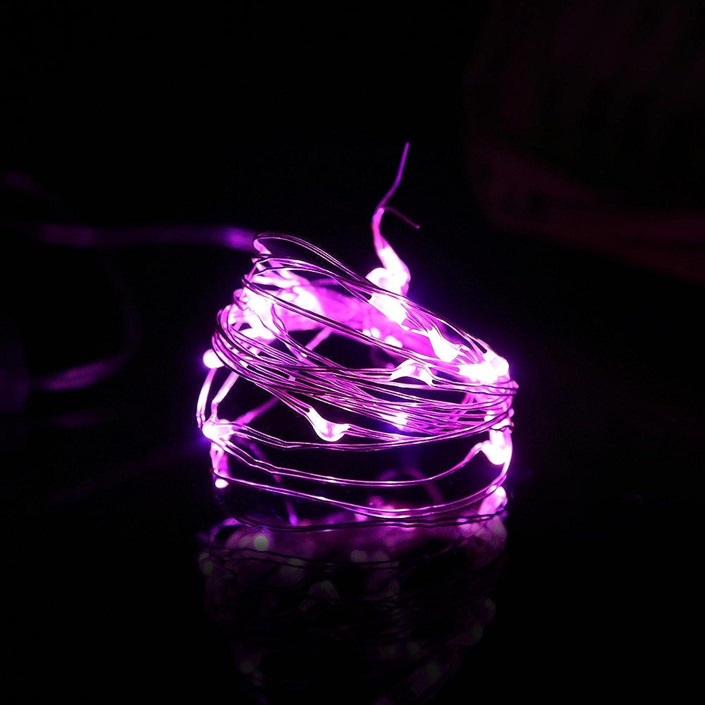 克服する略す細部LEDイルミネーションライト ハロウィン Timsa ボタン電池式 フェアリーライト LED装飾ライト パンプキン柄 ランタン 飾り ライト LEDストリングライト 室内 室外 庭 バレンタインデー パーティー クリスマス装飾 学園祭 電飾 銅線ライト 電球色 (2M 20球, パープル)