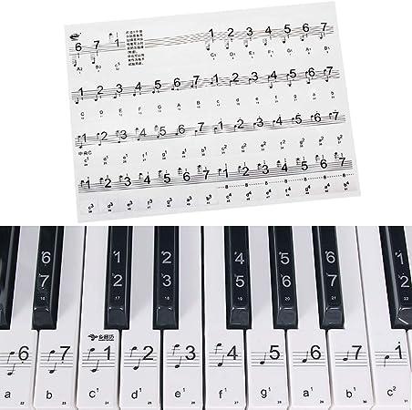 Pianos Teclados Pegatinas para 34 49 54 61 88 Key Keyboard Transparentes y Removibles(Negro)