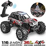 Best Rc Rock Crawlers - HisHerToy 4WD RC Trucks for Adults IPX4 Waterproof Review