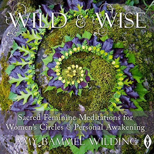 Wild & Wise Audiobook By Amy Bammel Wilding cover art