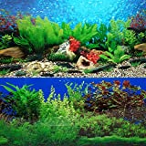ELEBOX New 20' x 48' Fish Tank Background 2 Sided River Bed & Lake...