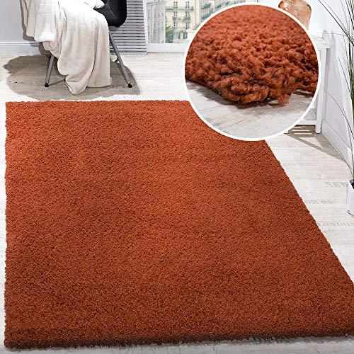 Paco Home Hochflor Shaggy Langflor Teppich versch. Farben u. Grössen TOP Preis NEU*OVP, Grösse:70x140 cm, Farbe:Terrakotta