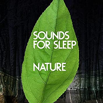 Sounds for Sleep: Nature