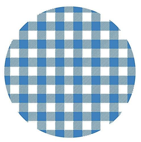 Reusable Blue & White Gingham Checkered Picnic / Dinner Plate, 9 Inch Melamine, Set of 5