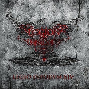 Legio Lvporvm XIV