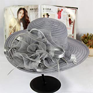 SHENTIANWEI Spring and Summer Sun hat mesh Organza Wedding Flowers Temperament Dome Cap Sun hat Dayan Mao Female Child Fashion (Color : Grey, Size : One Size)