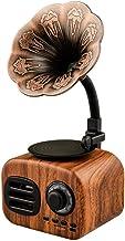 Techfans Vintage Retro Speaker Gramophone Bluetooth Record Player with FM Turnable Radio Stereo Sound Box Mini Wireless Speaker Support USB Device/TF Card/FM Radio Walnut Color