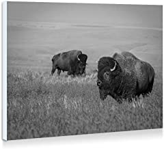 Bison - Art Print Wall Art Frameless Decorative Painting - Black And White - Ready To Hang