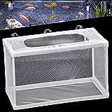 Caja de cría de acuario de 25,4 cm para caja de aislamiento de peces, guardería, acuario, con 6 ventosas (25 x 15 x 15 cm)