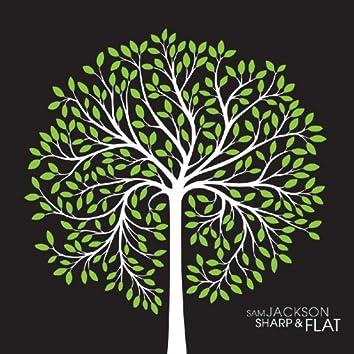 Sharp & Flat
