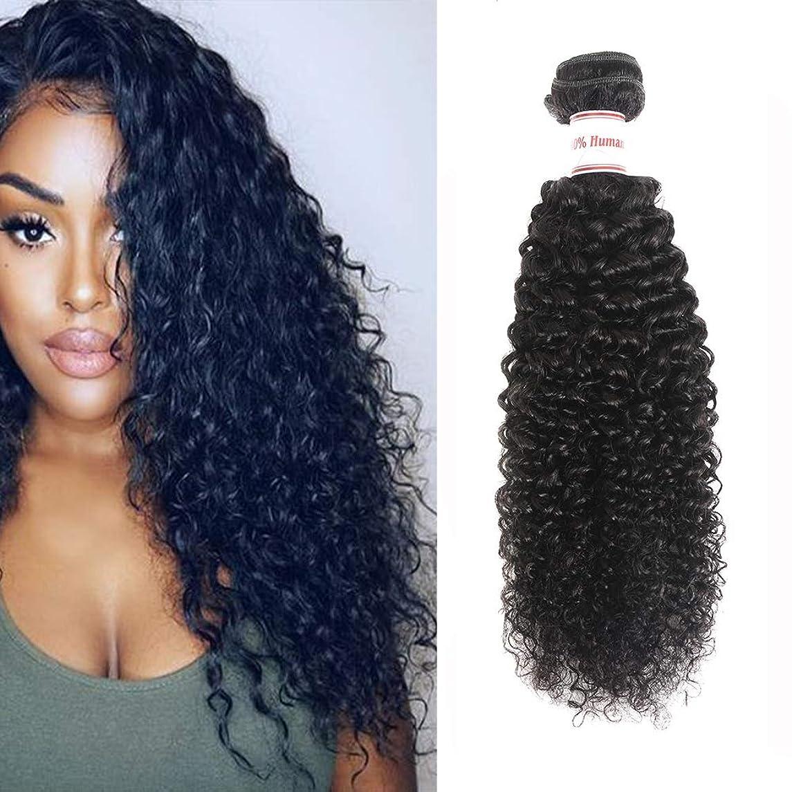Brazilian Kinky Curly Virgin Hair 1 Bundles 100% Unprocessed Brazilian Curly Human Hair Weave 100g/lot Natural Black (22inch)