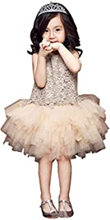 Baby Girl's Tutu Tulle Fashion Dress Toddler Girls Lace Party Pageant Flower Girl Dresses