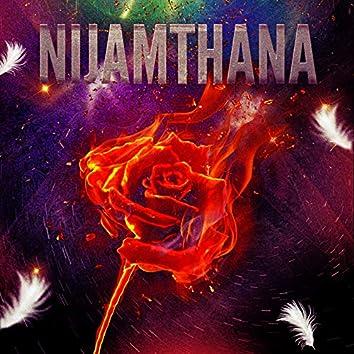 Nijamthana