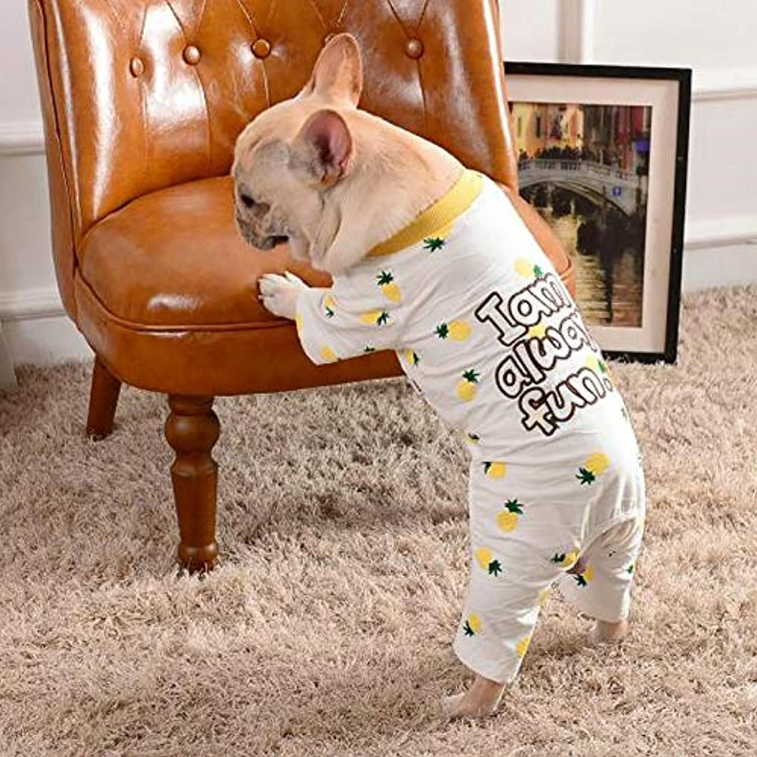 HUAIX petsuppliesmisc New pet clothes autumn and winter fourlegged clothes casual fourlegged clothes puppy clothes (color   White, Size   LL)