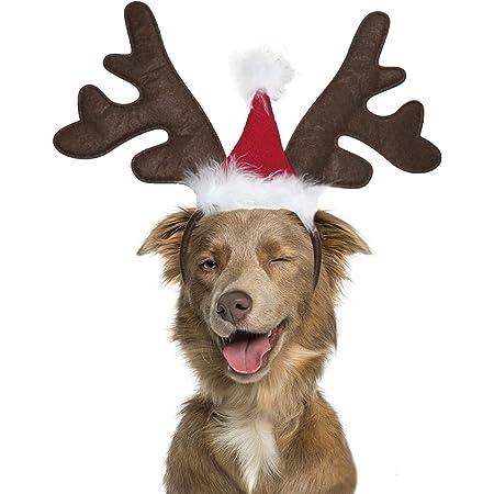 DOGO Reindeer Hat Large