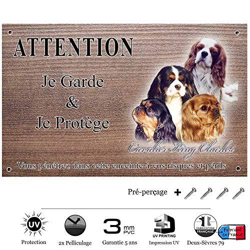 Pets-Easy.com Panneau Attention au Chien personnalisée Cavalier King Charles - pré perforée et vis données. De 30 cm à 15 cm…