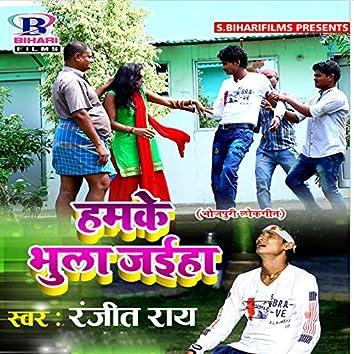 Hamke Bhula Jaeeha - Single
