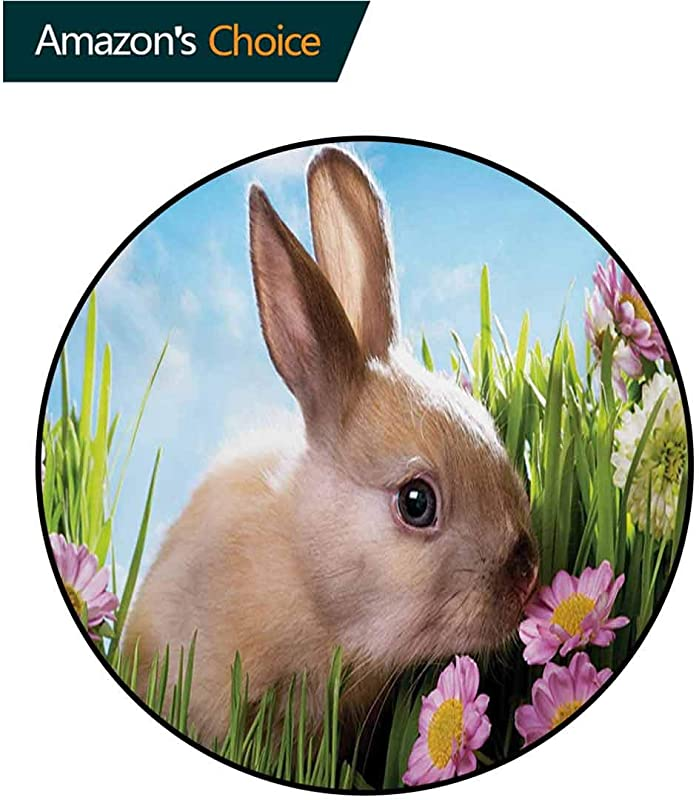 RUGSMAT Small Round Rug Carpet Easter Themed Rabbit Photography Small Animal In Tall Grass With Spring Flowers Door Mat Indoors Bathroom Mats Non Slip Diameter 59 Inch Multicolor