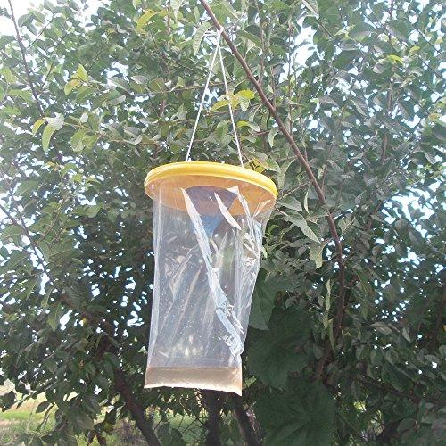 Hahuha Fänger, Red Drosophila Fly Trap Top Catcher Der ultimative Insektenfänger-Killer für Fliegenfänger, Andere