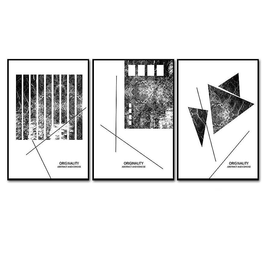 メッシュポット置き場壁の装飾 50×75センチメートル現代装飾絵画トリプティク抽象黒白ぶら下げ絵画レストランリビングルームポーチ壁画幾何写真ライン