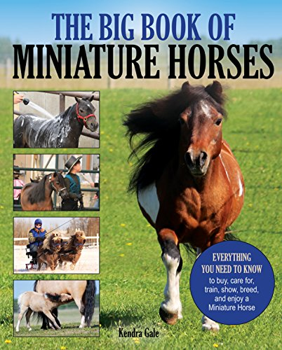 Compare Textbook Prices for The Big Book of Miniature Horses: Everything You Need to Know to Buy, Care for, Train, Show, Breed, and Enjoy a Miniature Horse of Your Own 1 Edition ISBN 9781570768200 by Gale, Kendra
