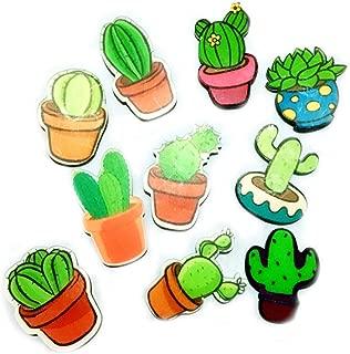 Koolemon 10Pcs Cute Acrylic Fridge Magnets Whiteboard Sticker Kitchen Refrigerator Magnets Cactus Succulent Magnets … (Succulent)