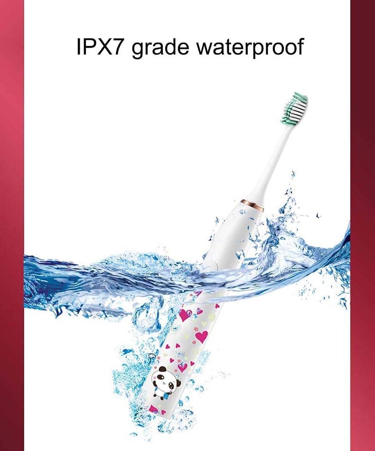 リーフレット試す悔い改める電動歯ブラシ、充電式ソニック振動歯ブラシ、ミュート防水電動歯ブラシ、誘導充電、3つのブラッシングモード(パターン:A)