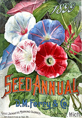"""D. M. Ferry & Co. Seed Annual 1899 Catalog Cover Reproduction 8.5""""x11"""" for Scrapbooking, Gift Giving or Home Decor"""