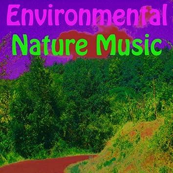 Environmental Nature Music (Vol. 8)