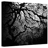 Art Wall Japanese Ying and Yang Tree Gallery Wrapped Canvas by John Black, 18 by 24-Inch