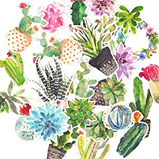 June Trendy Cute Cactus and Succulent Plants Waterproof Stickers for DIY Scrapbooking Bullet Journaling Planners Craft Laptops Water Bottle Phone Cases (28 Pieces)