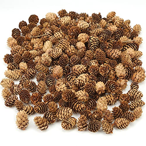 JOHOUSE 200PCS Natural Mini Pine Cones,Natural Pine Cones Christmas Pine Cones PineCones Ornaments for Autumn and Winter Decor Christmas Decorations