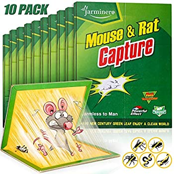 Mouse Traps Humane Mouse Glue Trap 10 PCS Rat/Mice Traps Sticky Pad Boards Strongly Adhesive Mouse Traps That Work No See Kill for House Indoor Outdoor Pet Safe