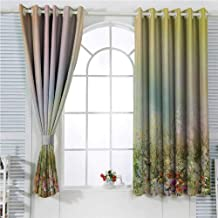 hengshu Watercolor Flower Home Decor Eclipse Blackout Curtains Cosmos Daisy Cornflower Wildflower Dandelion in Floral Meadow Scene Patio Door Curtains Living Room Decor W62 x L72 Inch Multi