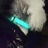 iManson LED Hundehalsband Light – Hunde Leuchthalsband Universell – 3 Modi – L Code(Blau) - 6