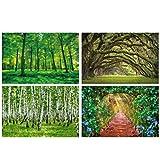 GREAT ART® juego de 4 motivos de carteles | Din A2 - 42 x 59,4 | paisaje de verano | viñas avenida bosque abedul robles árboles verdes | Cuadros para niños decoración póster