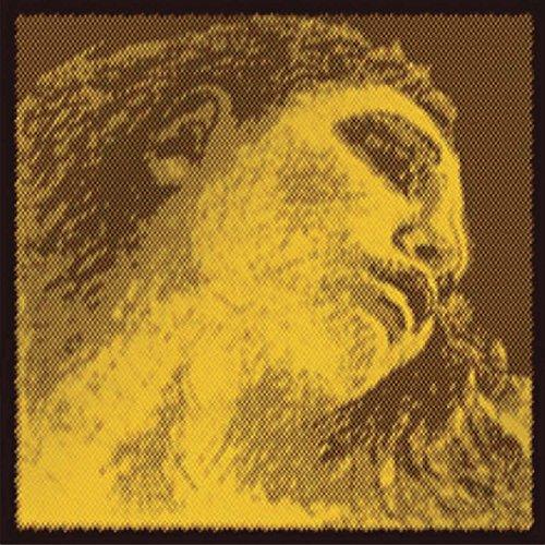 Pirastro Evah Pirazzi Gold Violi...