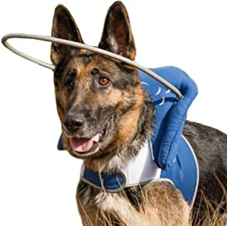 Muffin's Halo Blind Dog Harness Guide Device – Help for Blind Dogs or Visually Impaired Pets to Avoid Accidents & Build Confidence – Ideal Blind Dog Accessory to Navigate Surroundings – Blue- 3XL