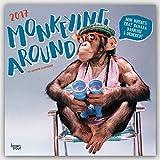 Monkeying Around - Schimpansen 2017 - 18-Monatskalender: Original BrownTrout-Kalender [Mehrsprachig] [Kalender] (Wall-Kalender)