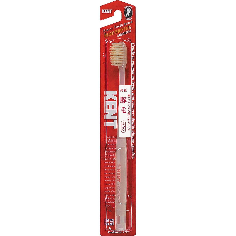 従事した季節マスタードKENTケント 豚毛歯ブラシ 毛の硬さ:ふつう KNT-1233 6本セット