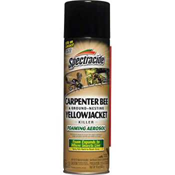 Spectracide 53371 Carpenter Bee and Ground Nesting Yellow Jacket Foaming Aerosol, 16-Ounce Insect Killer, Case Pack of 1