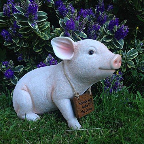 Baby Pig Resin Garden Ornament'Nobody puts Babe in the corner'